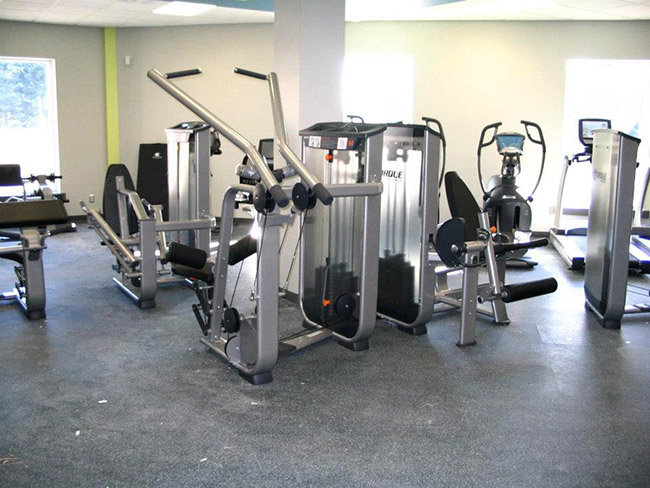 威踏室内健身器材案例